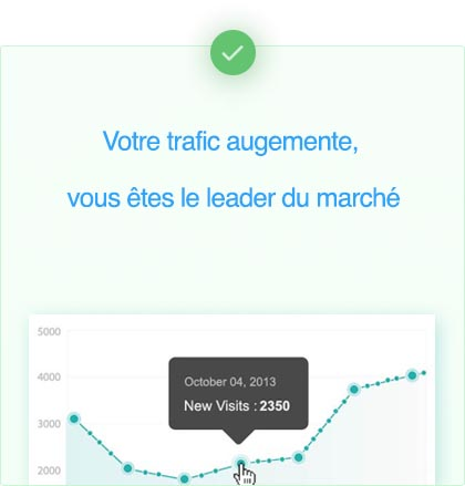trafic page google